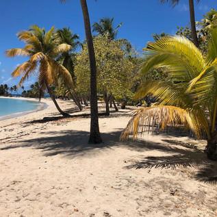 Menschenleerer Strand auf Mayreau ...