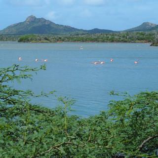 Die kleine Insel hat grosse Seen...