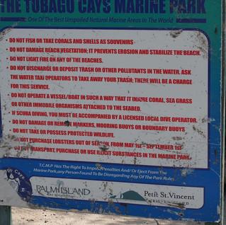 Do-not-Table auf den Tobago Cays