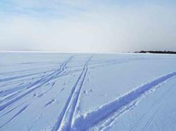 pärnu_ski-spuren_P2250002