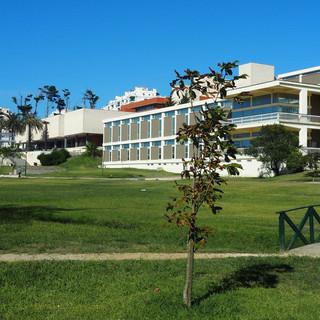 Bibliothek und Museum im Park