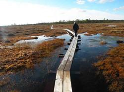 Soomaa-Nationalpark: