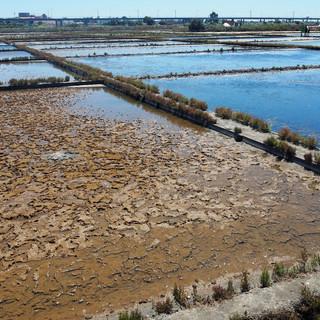 Wasserbecken zur Salzgewinnung.