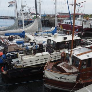 Packchenliegen in Helgoland - ein Erlebnis
