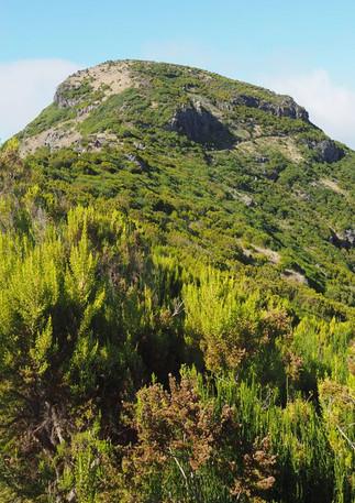 Der Gipfel des höchsten Berges auf Madeira ist no