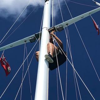 Suzanne hoch im Mast montiert die neue Wante.