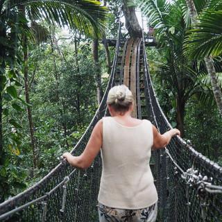 Suzanne in luftiger Höhe zwischen den Baumwipfeln.