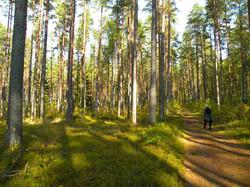 Pärnu: Spaziergang