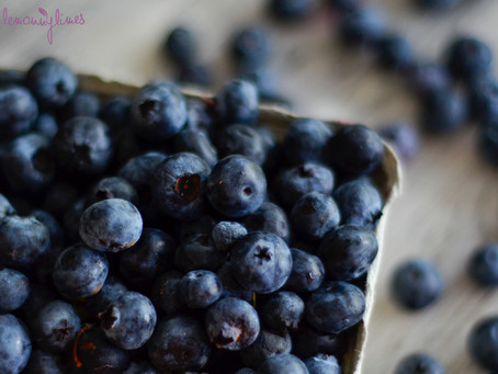 Raw – Blueberry cheescake