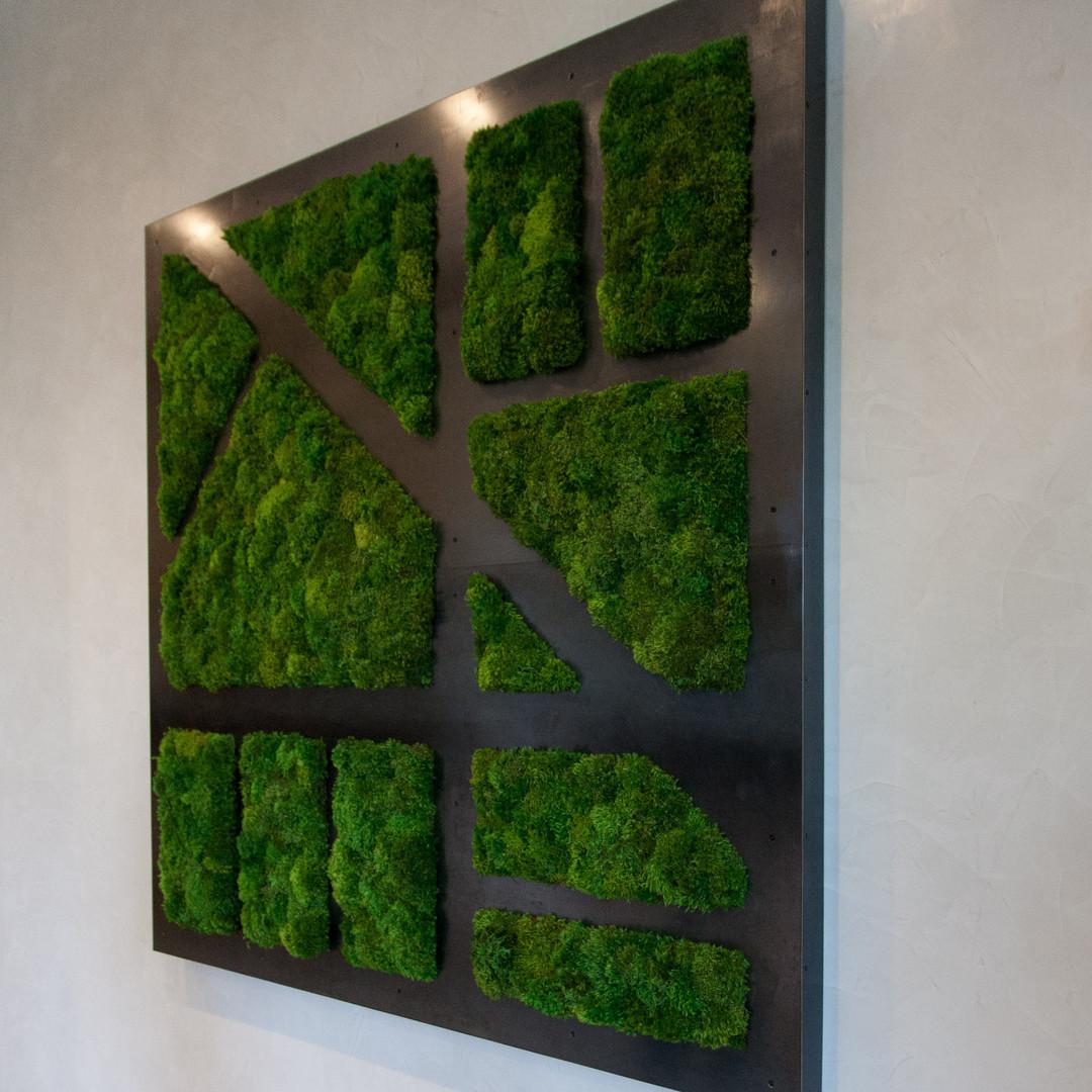 Dried Moss Wall