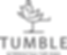 Tumbe Gymnastics for Kids Logo