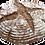 Thumbnail: 2x 600gr Fertige Bauernbrot Backmischung
