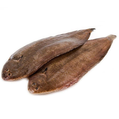 Wild Dover sole Seezunge Wildfang 3 Kg Box