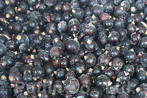 Schwarze Johannisbeeren gefroren Blackcurrant frozen 1 Kg Pack