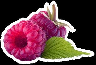Two Raspberries
