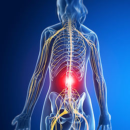 lower back pain miami