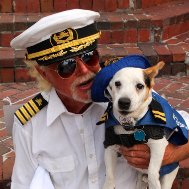 Dog in sailor outfit