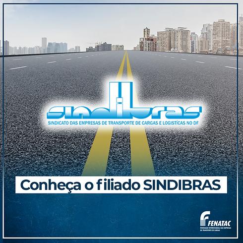 8 jan - Conheça SINDIBRAS.png