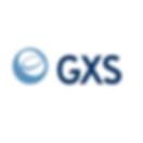 GXS.png