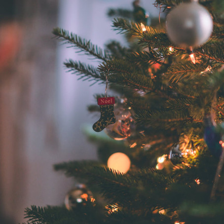The Reality of Christmas Trees: the Good and the Bad