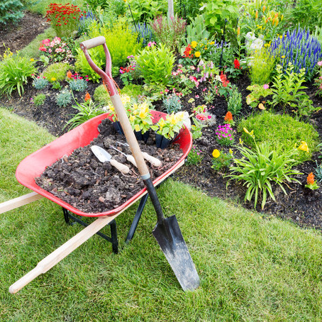 5 Reasons to Ditch the DIY in Your Landscape