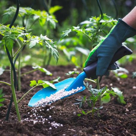 10 Landscaping DIYs You Can Actually Do Yourself