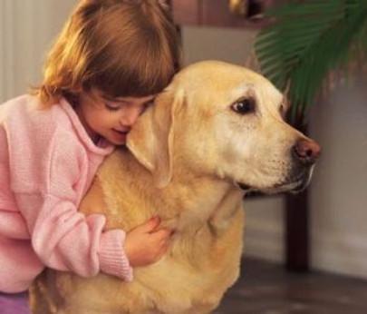 hugged dog