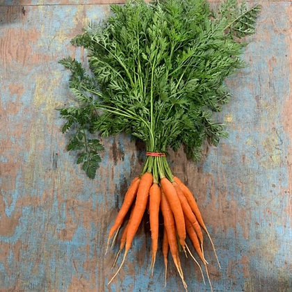 Carrots / Carottes, with Top, Organic (bunch)