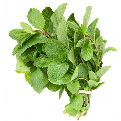 Mint / Menthe, Organic (15 g)