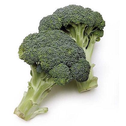 Broccoli / Brocoli, Organic (bunch)