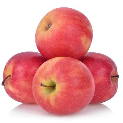 Apples / Pommes, Pink Lady, Organic