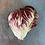 Thumbnail: Lettuce / Laitue, Radicchio, Organic