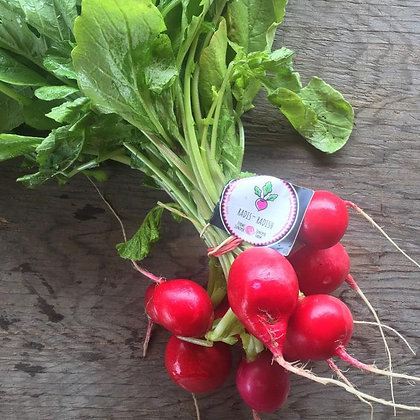 Radish / Radis, Local Wakefield, Organic (bunch)