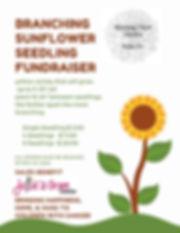 Sunflower Seedling Sale.jpg
