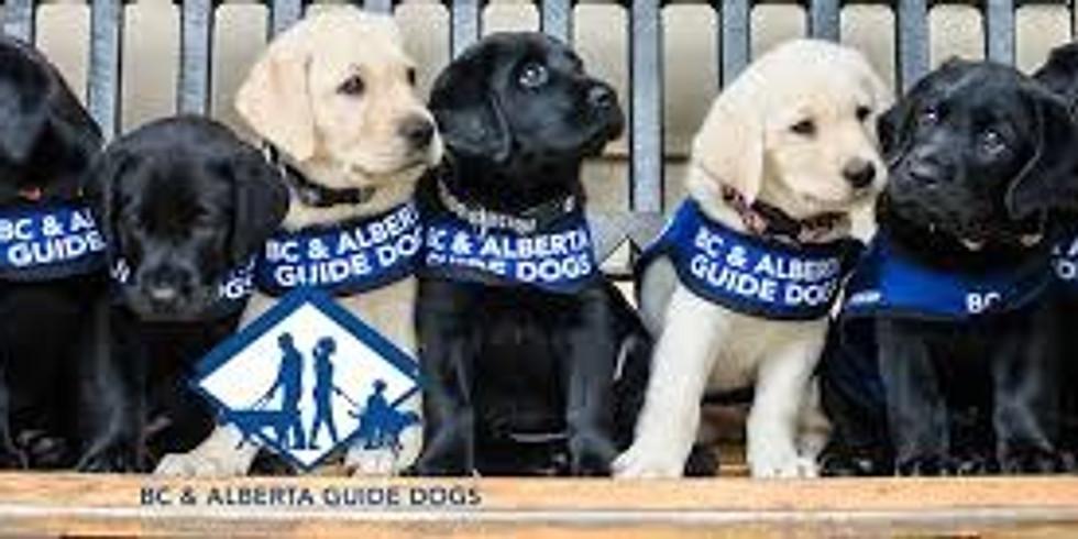 BC & Alberta Guide Dog Presentation