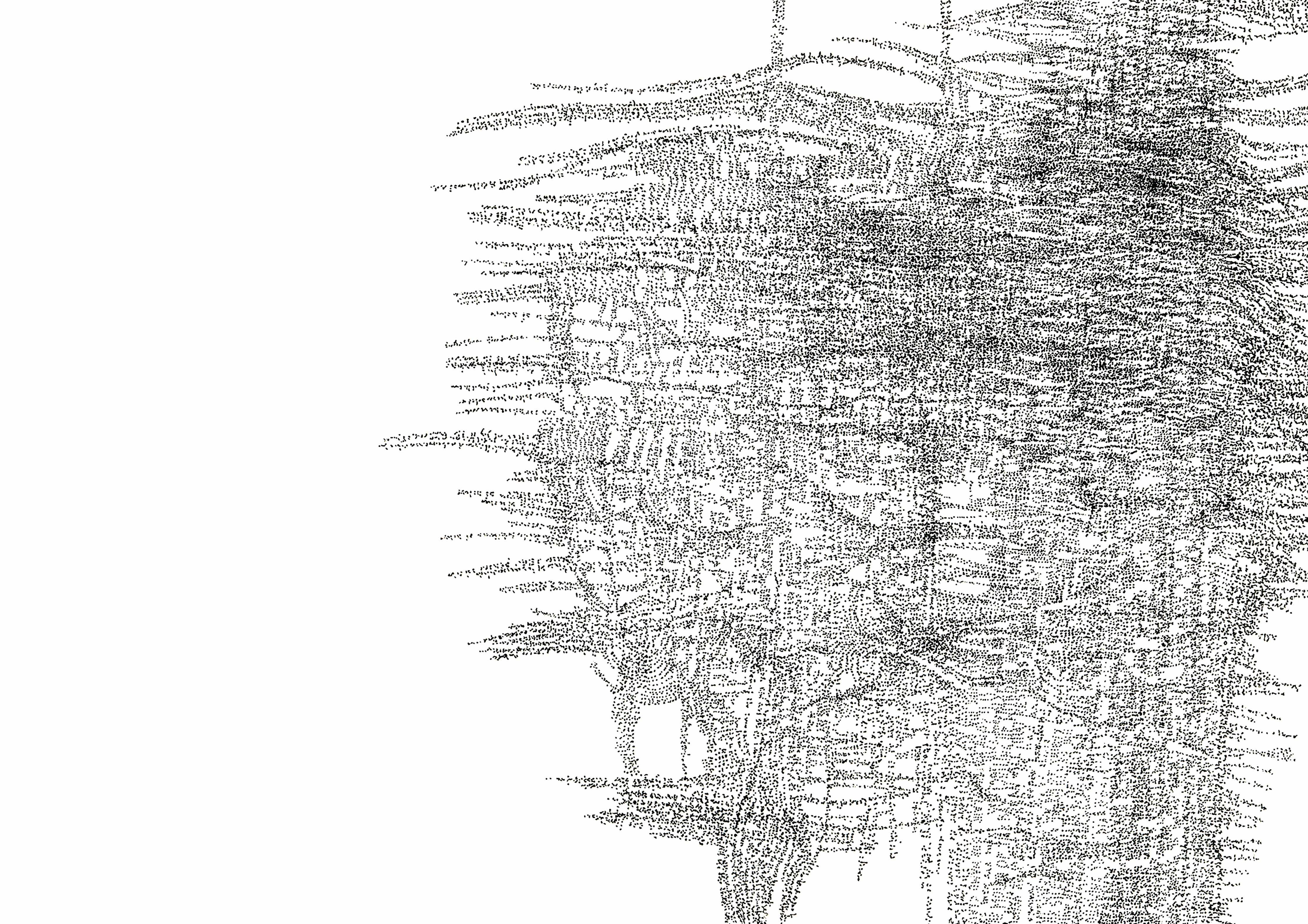 Torso – Camus Series