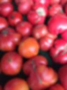 WP tomatoes.JPG