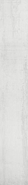 LUX082-STARKWOOD-NACAR.jpg