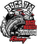 BUGS VW BACK BREAKING PERFORMANCE RACING