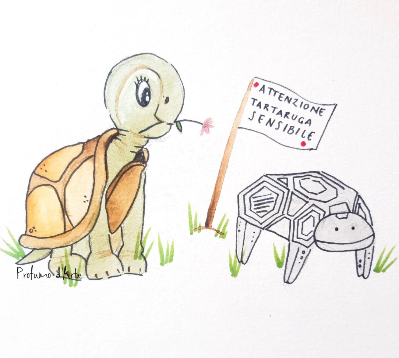 tartaruga sensibile_Giovanna Mancusi