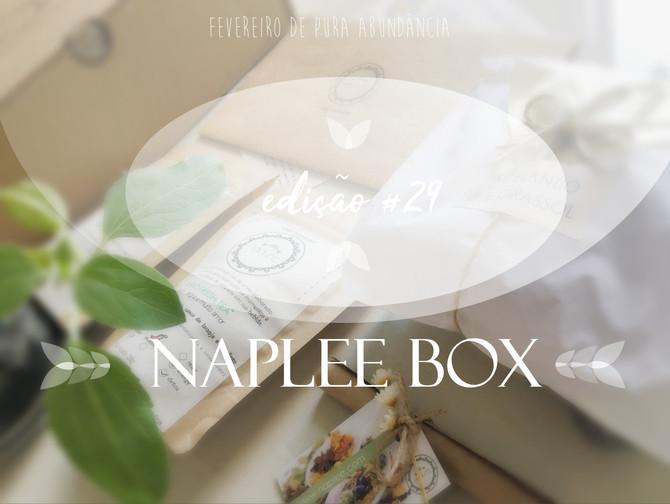 Desvendando a box Naplee tea                       edição #29     fevereiro 2019
