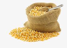 coroun-clipart-dried-corn-3.jpg