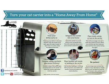Cat Carrier JPEG.jpg