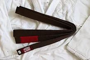 BJJ Brazilian Jiu Jitsu Brown Belt (Instructor)