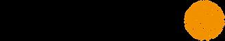 logo_iris_lights.png