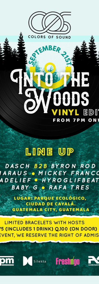 Into the Woods - Vinyl edition
