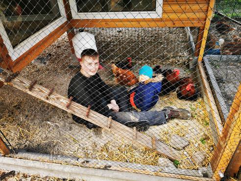 Jetzt neu im Programm: Hühner-H5N8 Grippe-Notbetreuung