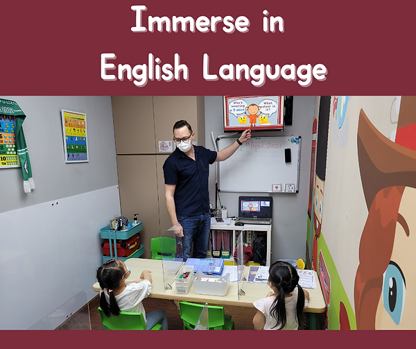 5. Immerse in English Language.png