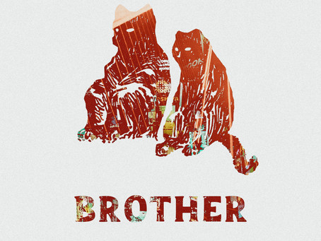 LEOPARD RAYS- BROTHER REVIEW