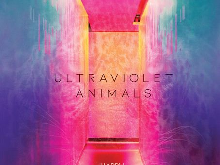 HAPPY DAGGERS - ULTRAVIOLET ANIMALS REVIEW
